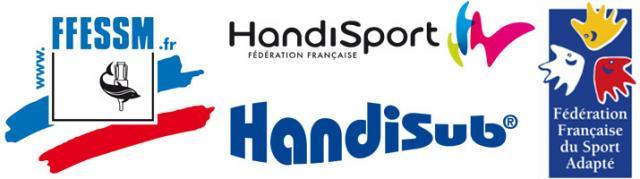 Logo Handisub
